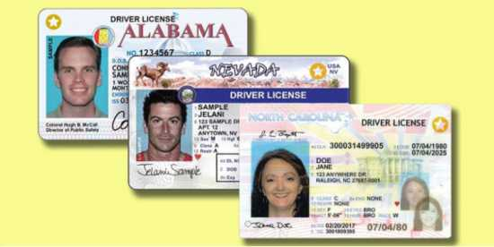 novelty id cards driver's license