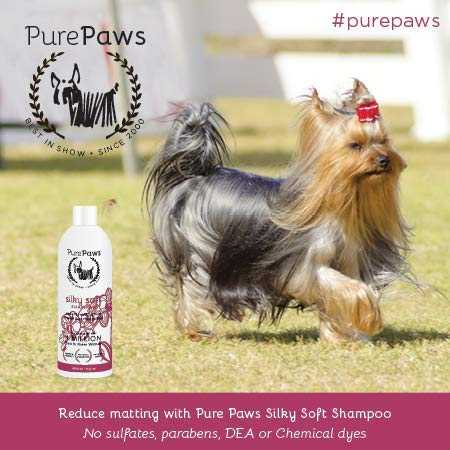 Pure Paws The best Dog Shampoo!