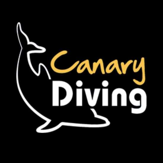 PADI Open Water Diving Course in Gran Canaria