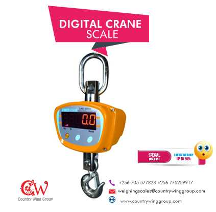 Affordable Mini Crane Weighing Scales in Uganda