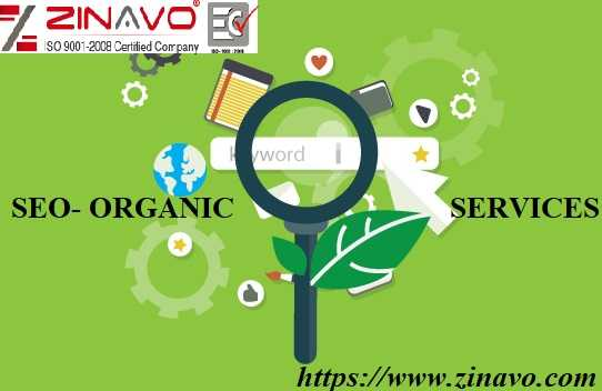 Guaranteed Organic SEO Services | Zinavo
