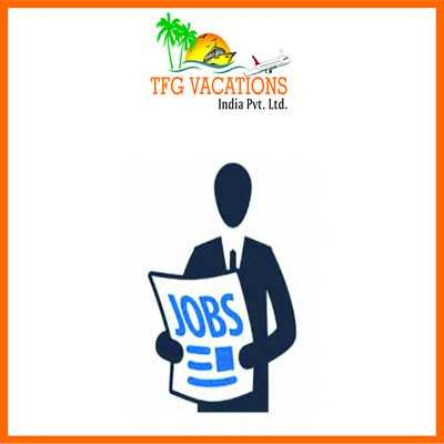 Tourism Company Hiring Candidates For Part Time Jo